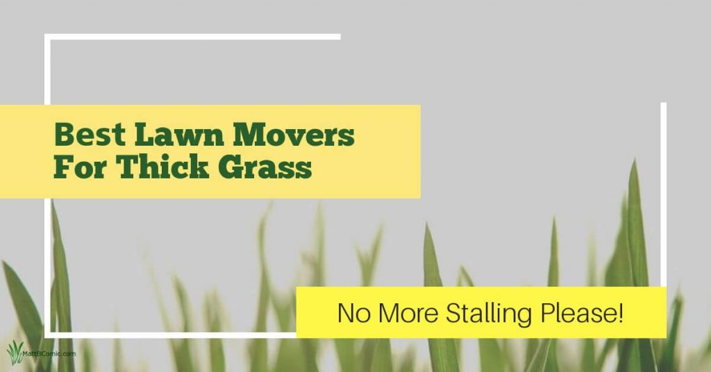 Best Lawn Mowers For Thick Grass Featured Image