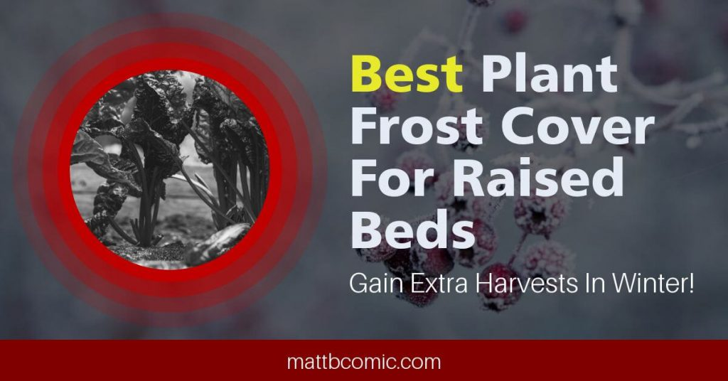 Top Winter Screen Covers For Raised Garden Beds Featured Image