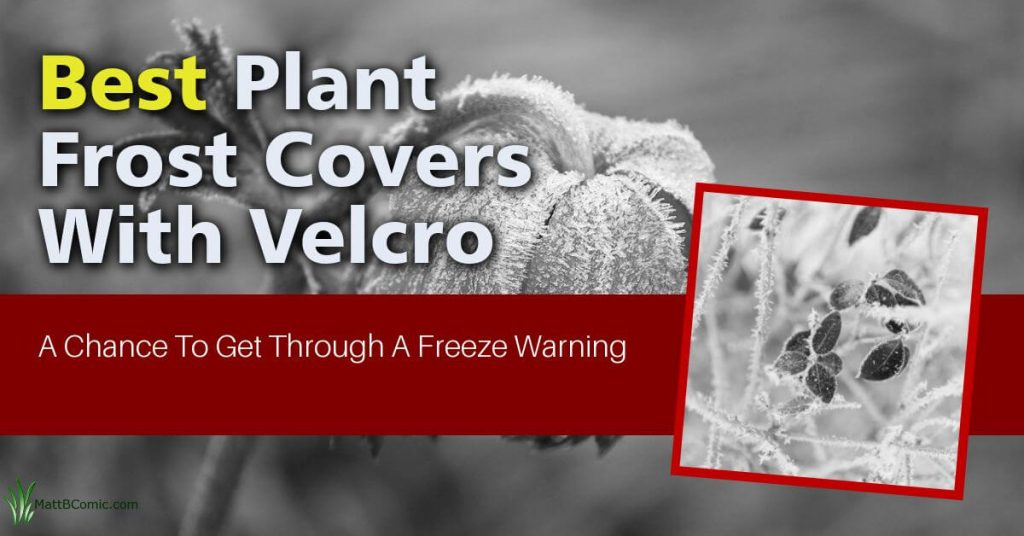 Plant Covers For Winter With Velcro Featured Image