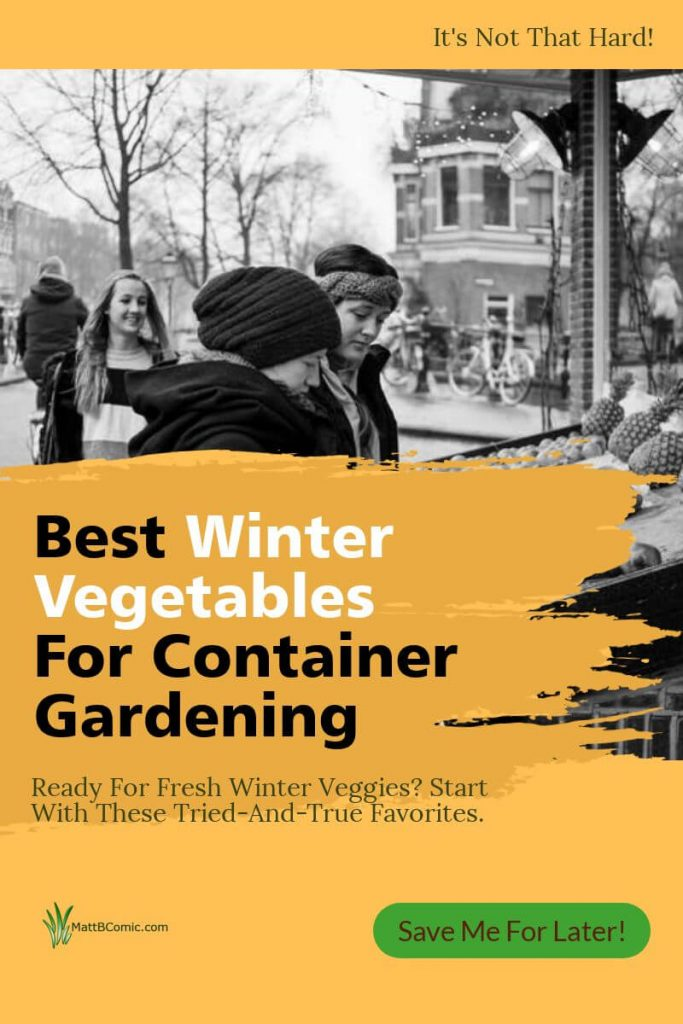 Winter Container Vegetable Gardening Post Graphic